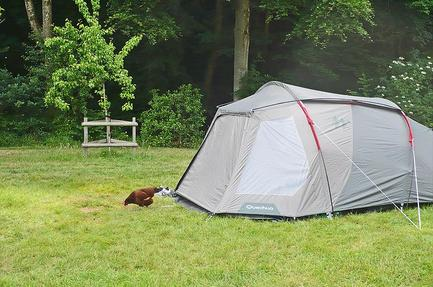 Camping Priory Mill Farm