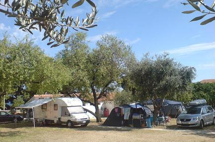 Camping Trstenica