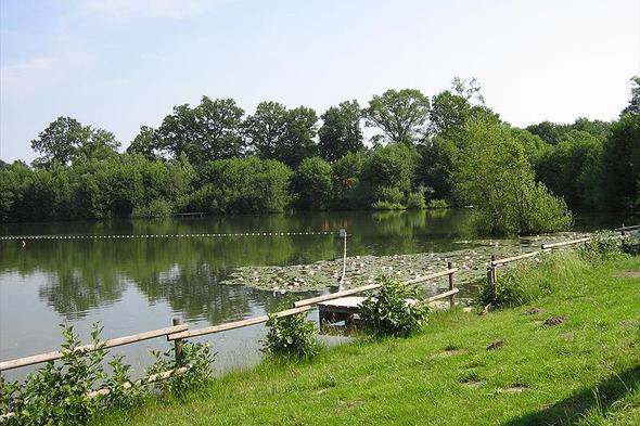 Campsite Erholungsgebiet Waldsee GmbH