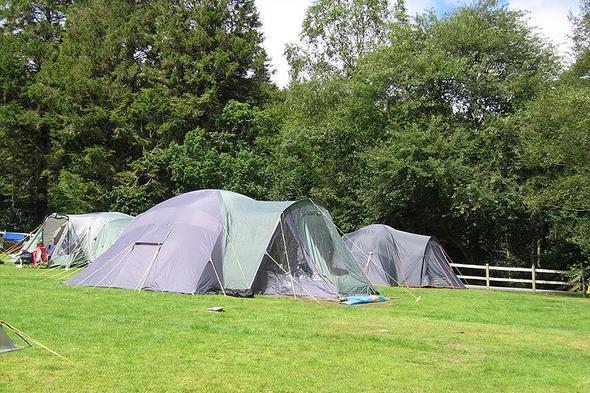Beddgelert Forest C. & C. Site