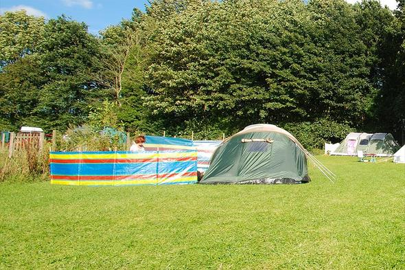 Campsite Muntjac Meadow